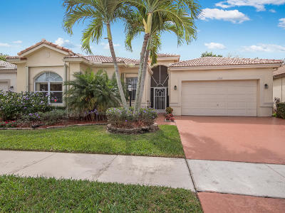 Lake Worth Single Family Home For Sale: 3916 Summer Chase Court