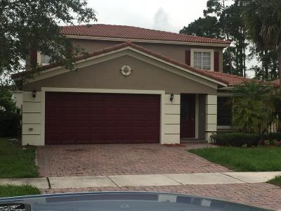 Port Saint Lucie Single Family Home For Sale: 2076 SW Marblehead Way SW