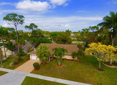 Royal Palm Beach Single Family Home For Sale: 228 Parkwood Drive S