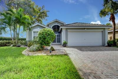 Boynton Beach Single Family Home For Sale: 11973 Mataro Avenue