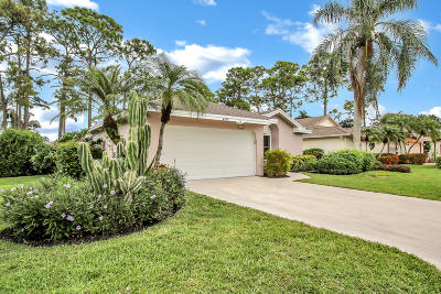 Palm Beach Single Family Home For Sale: 6829 Touchstone Circle