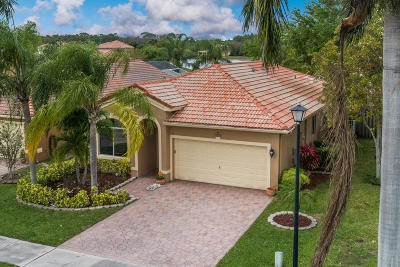 Coconut Creek Single Family Home For Sale: 4245 Banyan Trails Drive