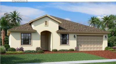 Fort Pierce Single Family Home For Sale: 4206 Birkdale Drive #A056
