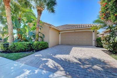 Boynton Beach Single Family Home For Sale: 7144 Whitfield Avenue