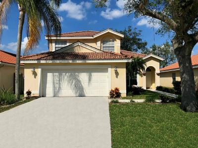 Lake Worth Single Family Home For Sale: 7701 Bristol Bay Lane