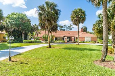 Wellington Single Family Home For Sale: 13768 Doubletree Trail