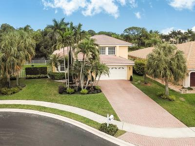 Boynton Beach Single Family Home For Sale: 9292 Lakeside Lane