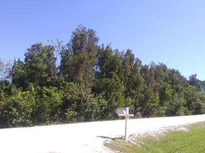 West Palm Beach Residential Lots & Land For Sale: 79 Court 79th Court