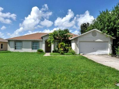 Port Saint Lucie Single Family Home For Sale: 991 SW Jasper Avenue