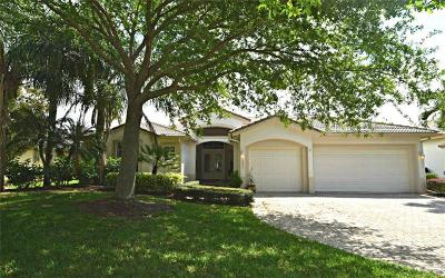 Martin County Single Family Home Contingent: 2294 SW Dove Canyon Way