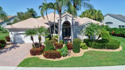 Boynton Beach Single Family Home For Sale: 7807 Bridlington Drive