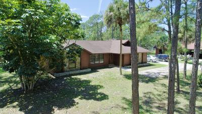 Jupiter Single Family Home For Sale: 13366 165th Road