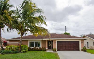 Wellington Single Family Home For Sale: 964 Sage Avenue