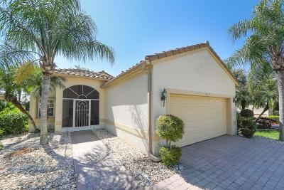 Port Saint Lucie Single Family Home For Sale: 451 NW Lismore Lane