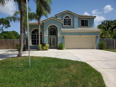 Port Saint Lucie Single Family Home For Sale: 170 NE Dominican Terrace
