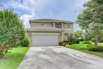 Greenacres Single Family Home For Sale: 6543 Spring Meadow Drive