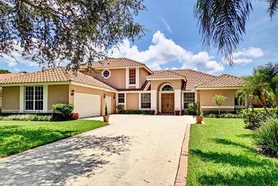 Jupiter Single Family Home For Sale: 155 River Drive E