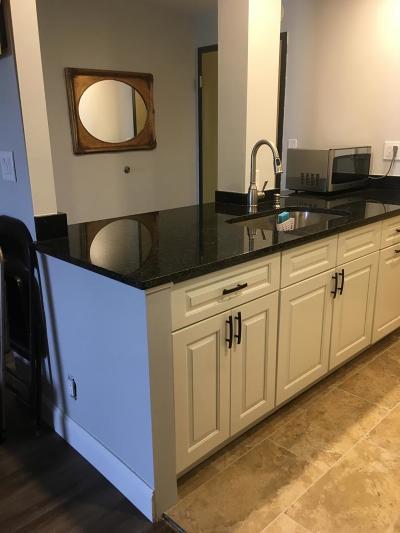 Fort Lauderdale Condo For Sale: 900 NE 18th Avenue #501