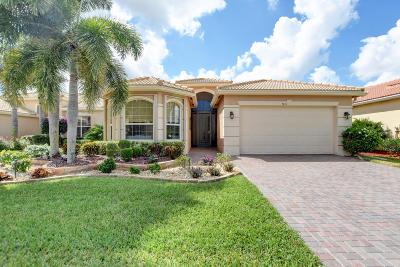 Boynton Beach Single Family Home For Sale: 9416 Ivory Isle Road