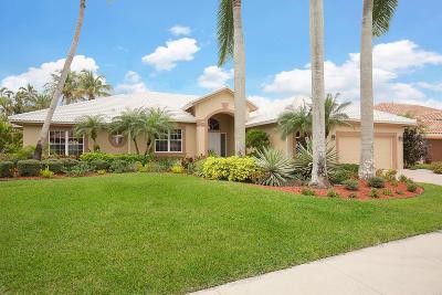 Boynton Beach Single Family Home For Sale: 8177 Desmond Drive