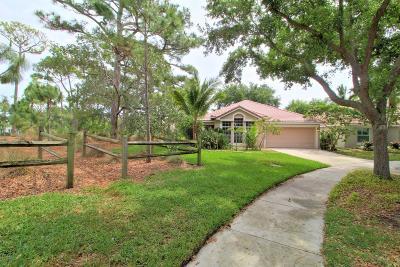 Delray Beach Single Family Home For Sale: 593 Canoe Point