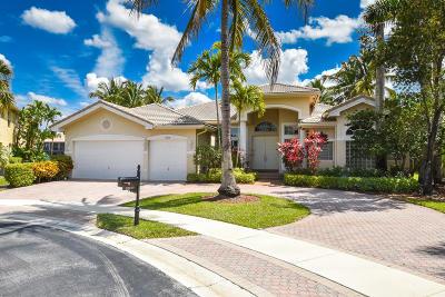 Saturnia Single Family Home For Sale: 19210 Creekshore Court
