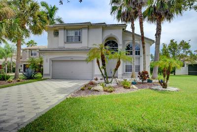 Boca Raton Single Family Home For Sale: 19042 Skyridge Circle