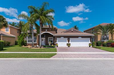 Lake Worth Single Family Home For Sale: 6487 Nikki Way