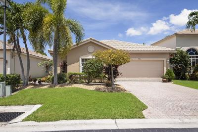Boynton Beach Single Family Home For Sale: 7704 Colony Lake Drive