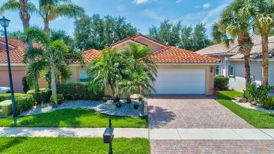 Boynton Beach Single Family Home For Sale: 7680 Caprio Drive