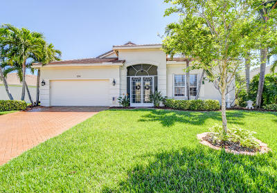 Port Saint Lucie Single Family Home Contingent: 724 SW Myakka River Trace