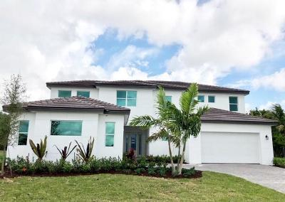 Boynton Beach Single Family Home For Sale: 9605 Captiva Circle