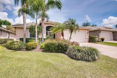 Boynton Beach Single Family Home For Sale: 8130 Duomo Circle