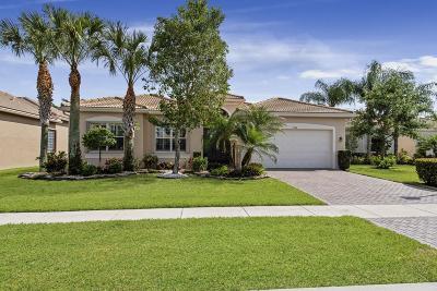 Boynton Beach Single Family Home For Sale: 9548 Dovetree Isle Drive