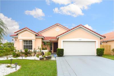 Wellington Single Family Home For Sale: 13262 Greenshore Place