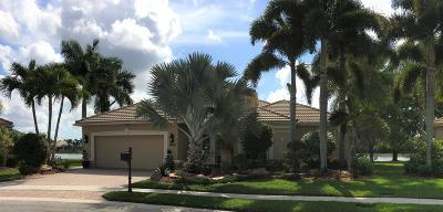 Lake Worth Single Family Home For Sale: 9453 Palestro Street