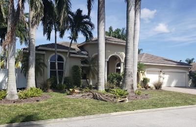 Boynton Beach Single Family Home For Sale: 9656 Colocasia Way