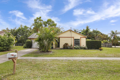 Jupiter Single Family Home For Sale: 161 Village Circle