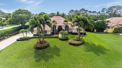 Palm Beach Gardens Single Family Home For Sale: 7661 Bold Lad Road