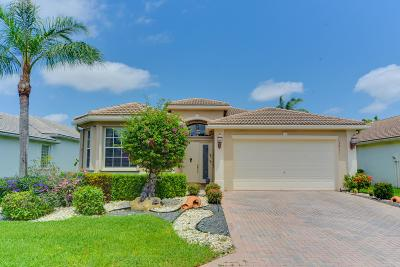 Delray Beach Single Family Home For Sale: 13411 Cordoba Lake Way