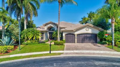 Boca Raton Single Family Home For Sale: 19565 Havensway Court