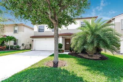 Lake Worth, Lakeworth Single Family Home For Sale: 6611 Rainwood Cove Lane