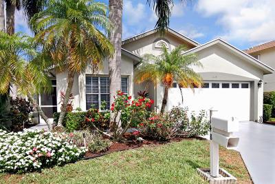 Greenacres Single Family Home For Sale: 148 Hammocks Drive