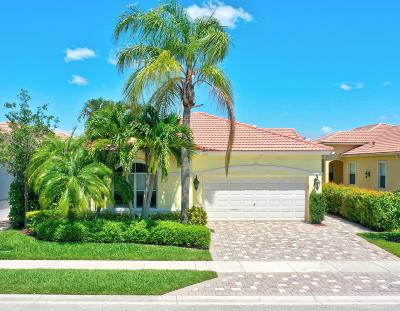 Palm Beach Gardens Single Family Home For Sale: 103 Casa Grande Court