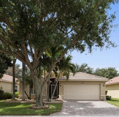 Boynton Beach Single Family Home For Sale: 5322 Vernio Lane