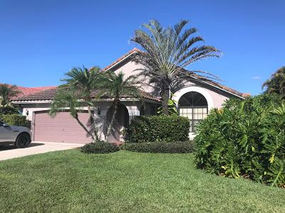 Boca Raton Single Family Home For Sale: 10405 Islander Drive