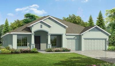 Port Saint Lucie Single Family Home For Sale: 5462 NW Crooked Street
