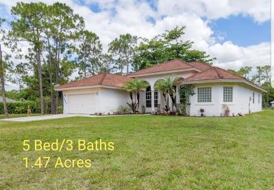 Loxahatchee Single Family Home For Sale: 15245 61st Place