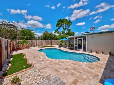 Wellington Single Family Home For Sale: 1142 Essex Drive