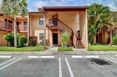 Royal Palm Beach Condo For Sale: 1205 E Lakeview Drive